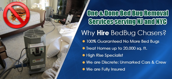 Bed Bug Heat Treatment NJ NYC Staten Island Westchester County