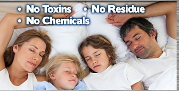 How to get rid of bed bugs NJ, How to get rid of bed bugs NYC, Kill Bed Bugs NJ, Bed Bug Bites NJ, Bed Bug Pictures NJ, Bed Bug Spray NJ,