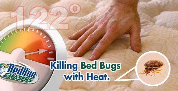 Bed Bug Heat Treatment NJ, Get Rid of Bed Bugs NJ, Bed Bug Exterminator NJ,