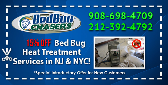 bed bug bites Rockland County NY, bed bug heat Rockland County NY, Bed bug heat NJ, Bed bug heat NY, Bed bug heat NYC, Bed bug heat Manhattan, Bed bug heat Brooklyn, Bed bug heat Bronx, Bed bug heat Staten Island, Bed bug heat PA, Bed bug heat Philly, Bed bug heat Westchester County, Bed bug heat Orange County, Kill Bed Bugs NY NJ PA NYC Brooklyn Staten Island Manhattan Queens Long Island City Rockland County NY Bed Bug Heat Treatment